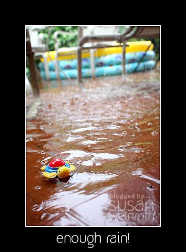 Blog rain