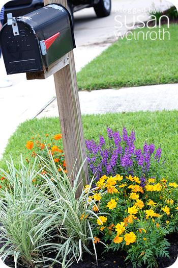 Blog landscaping