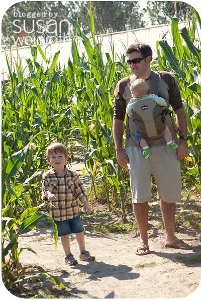 Blog farm 3