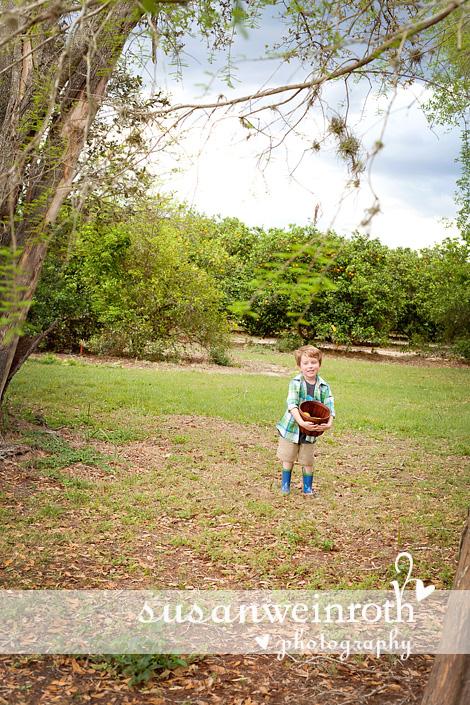 Blog - grove