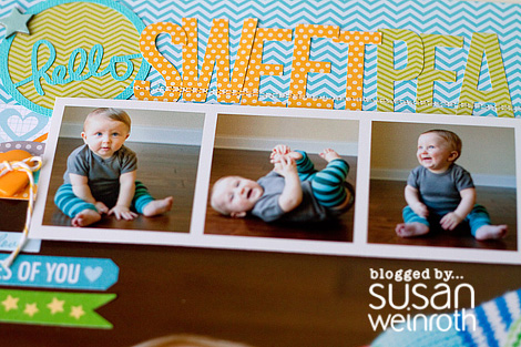 Blog - Hello Sweetpea - DETAIL - susan weinroth