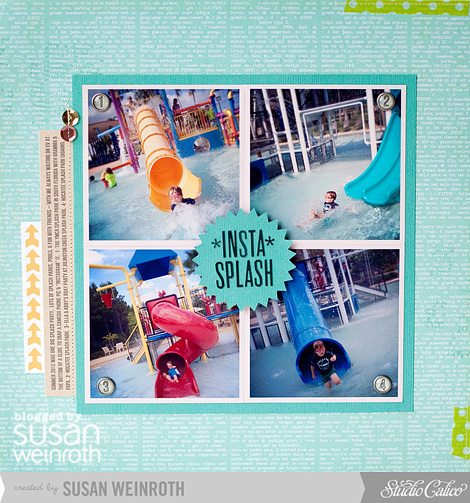 Blog - Insta Splash - susan weinroth
