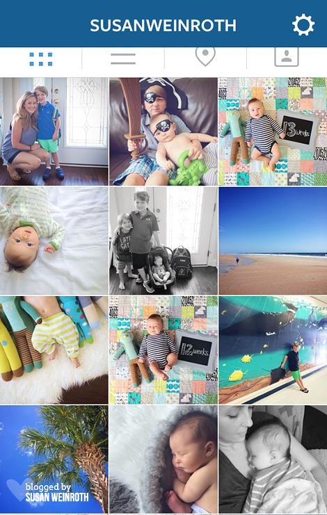 Blog - instagram feed susan weinroth
