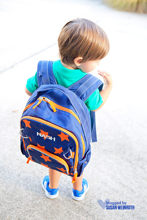 Blog - nash backpack