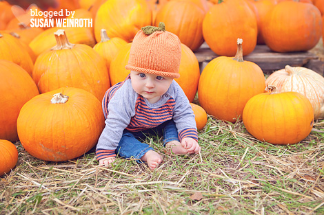 Blogged by susan weinroth - pumpkin patch baby 2
