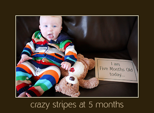 Crazy_stripes_at_5_mos