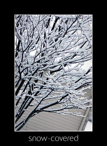 March_snow_2