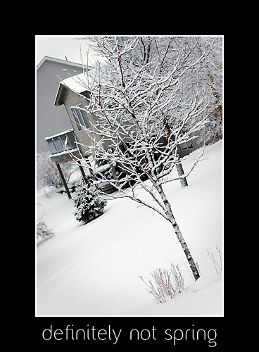 March_snow_3