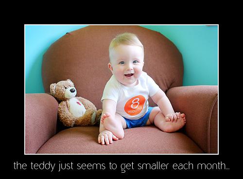 Teddy_pic